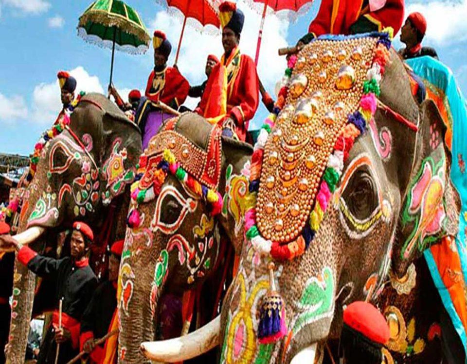 india-slonyi